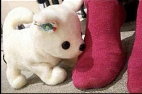 این ربات پای بدبو را ردیابی می کند