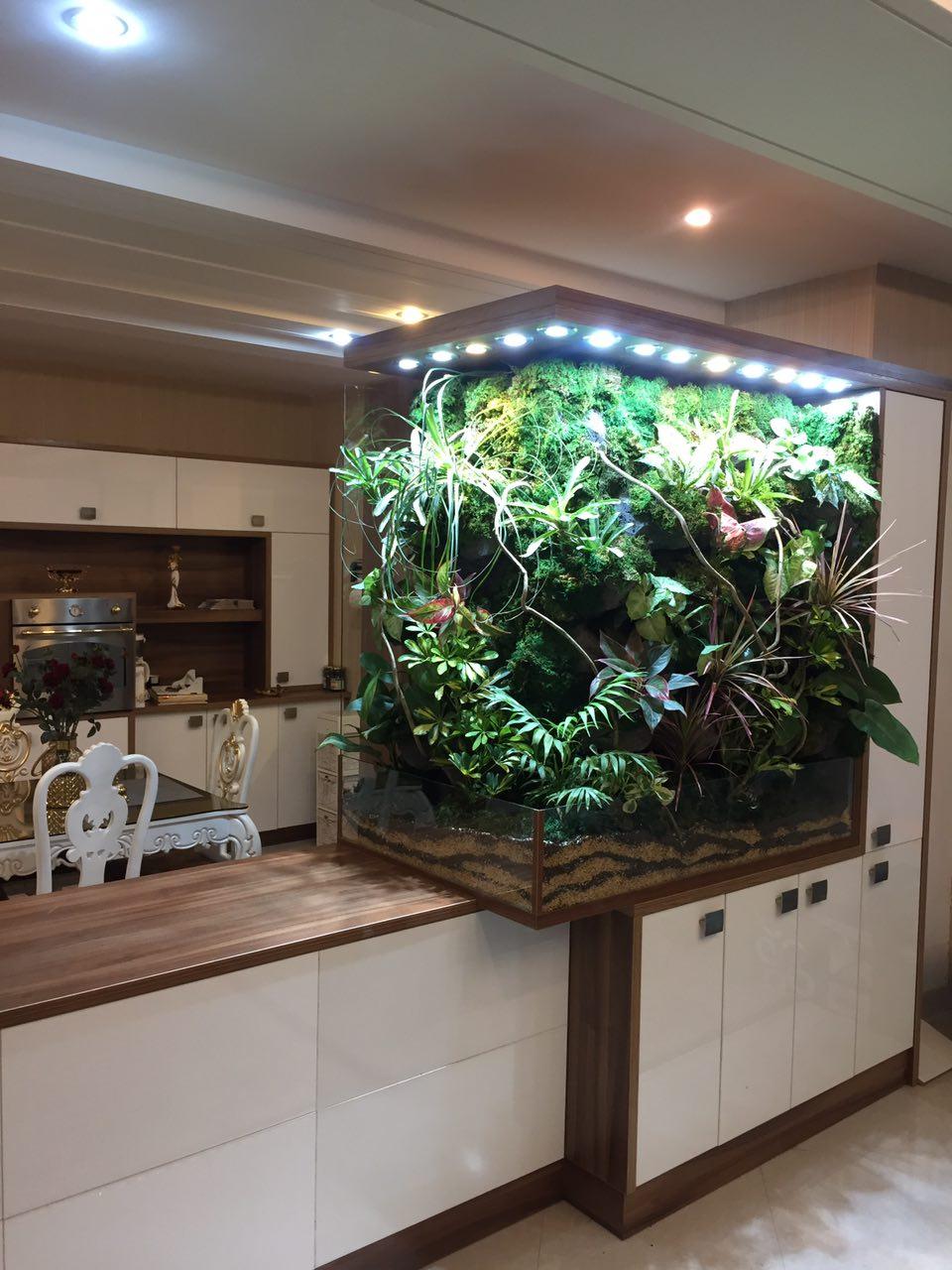 تراریوم باغ شیشه ای پالوداریوم